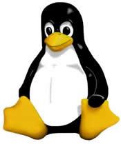 20061223173906-linux-penguin.jpg
